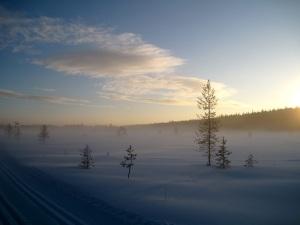 Talvinen, luminen maisema.