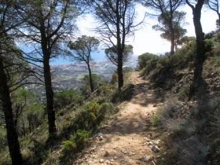 Maisemakuva espanjalaisesta ylöspäin kohoavasta polusta.