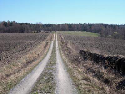 Maisema pelloista ja niitä halkovasta tiestä pääsiäisen aikaan.