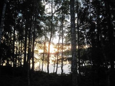 Järvi pilkottaa puiden takaa.