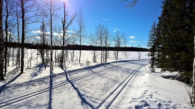 Maisemakuva talviselta hiihtoladulta.