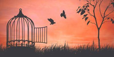 Häkki auringonlaskussa, jonka ovi on auki ja siitä lentää pois kaksi lintua.