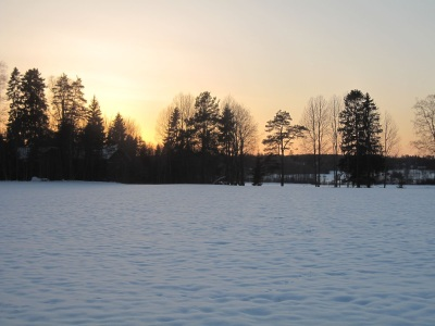 Maisemakuva auringonlaskusta lumisen pellon ja puiden taakse.