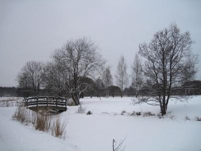 Lumisia puita ja joen ylittävä silta.