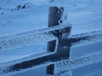 Luminen aita.