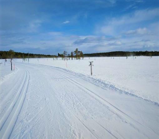 Luminen maisemakuva hiihtoladulta.