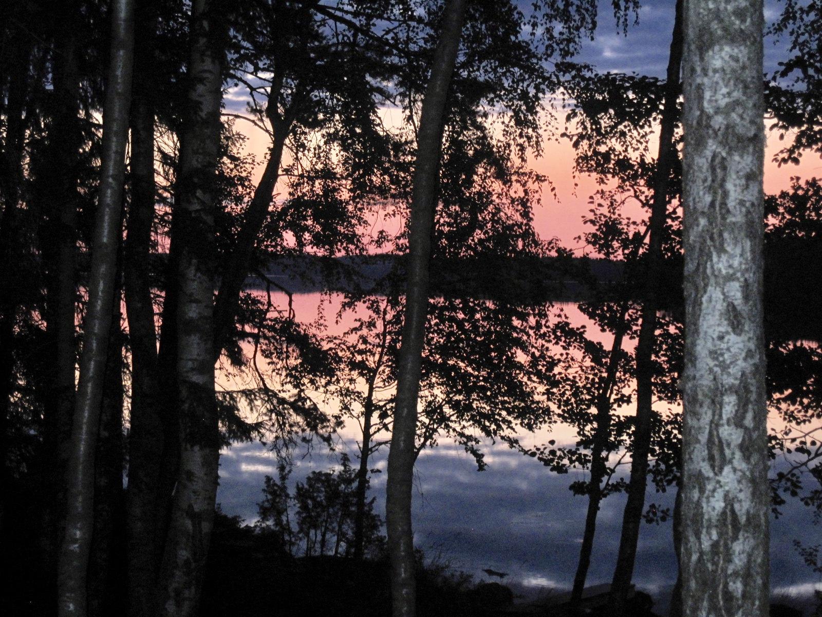 Auringonlasku järvellä puiden takaa kuvattuna.