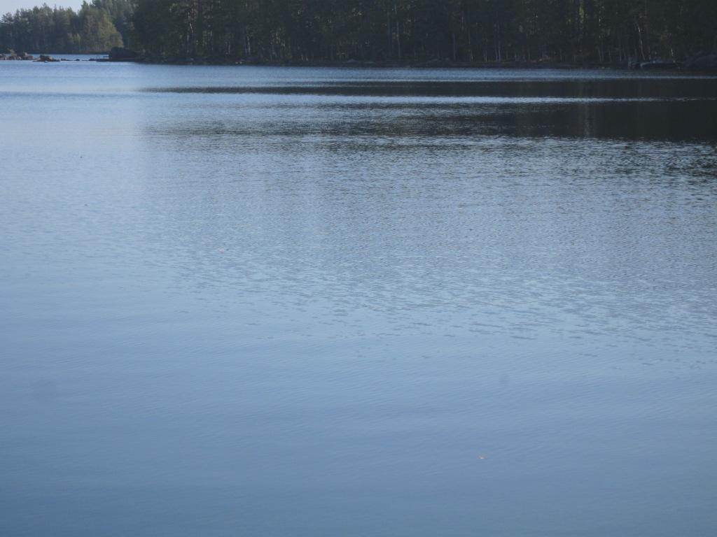 Järvimaisema, jossa suurin osa on vettä ja taustalla hieman puita.