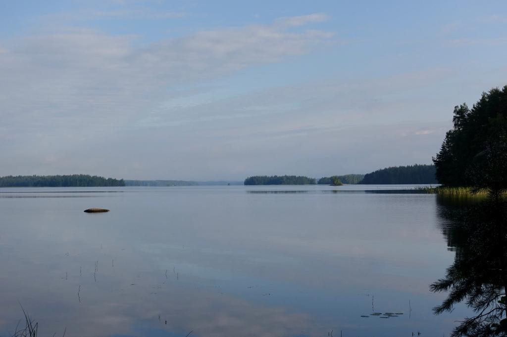Järven selkä aamun valossa.