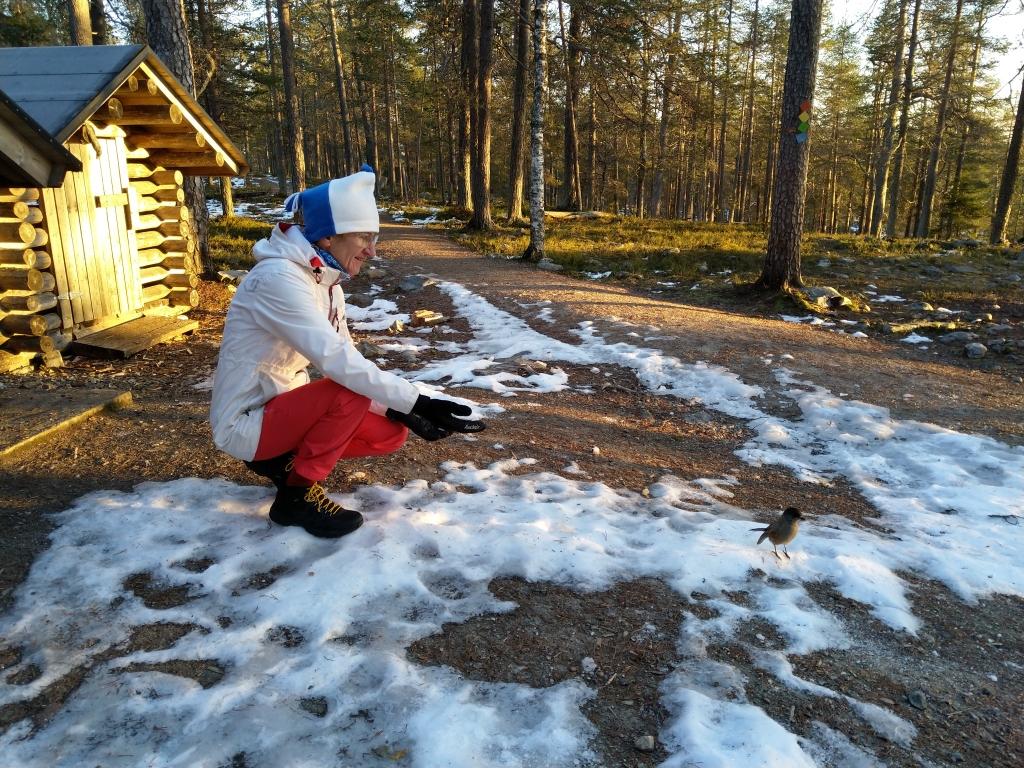 nainen ojentaa kättään kohti kuukkelia aurinkoisena päivänä, maassa vähän lunta.